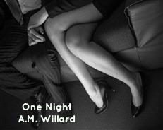 One Night Couple